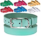 BronzeDog Genuine Leather Dog Collar Puppy Pet Collar for Dogs Small Medium Large Pink Red Blue Green Turquoise White Yellow (Neck Size 15'' - 17'', Turquoise)