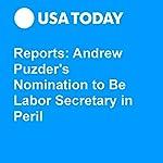 Reports: Andrew Puzder's Nomination to Be Labor Secretary in Peril | Michael Collins