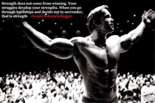 Arnold Schwarzenegger Bodybuilding Motivational Poster 12X18 Gym Decoration Get Motivation