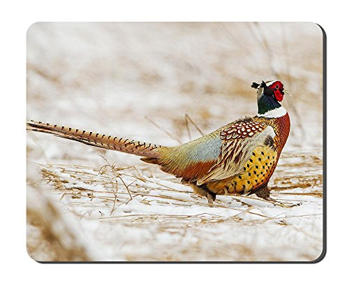 - Bird Pheasant Tail Winter Snow Animal Picture Game Office Mouse Pad (7x8.5inches)