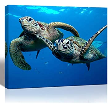 Purple Verbena Art 1 Panel Two Submarine Turtles Under The Sea Pictures Prints on Canvas Walls Paintings, Modern Seaview Animal Giclee Wall Artwork for Home Decor, Stretched and Framed, 12x16 Inch