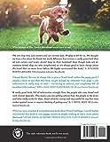 The Cavalier King Charles Spaniel Handbook: The