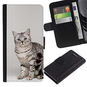 Egyptian Mau Bengal Bobtail Cat - la tarjeta de Crédito Slots PU Funda de cuero Monedero caso cubierta de piel Sony Xperia Z1 Compact D5503