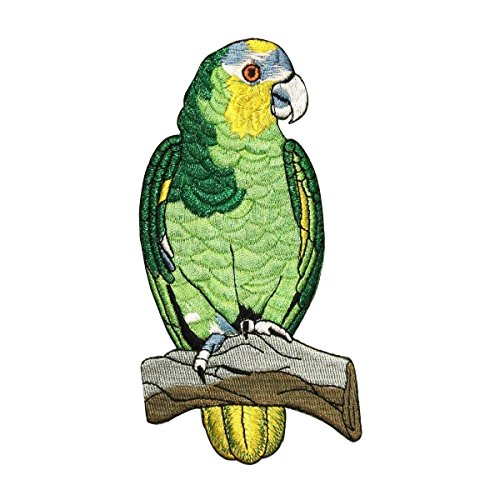 ID 0621 Green Parrot Patch Pet Sit Branch Exotic Embroidered Iron On (Parrot Iron On Transfers)