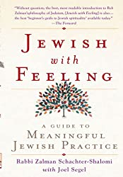 Jewish With Feeling: A Guide to Meaningful Jewish Practice