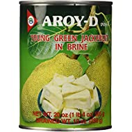 Aroy-D Young Green Jackfruit in Brine, 20 Ounce (Pack of 6)