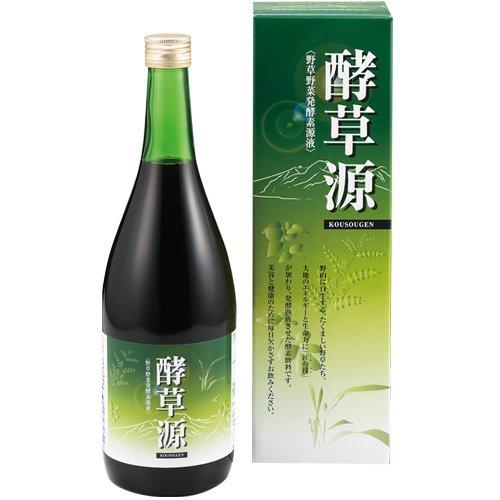 野草野菜発酵素源液 酵草源(こうそうげん) B00CD0K8ZM