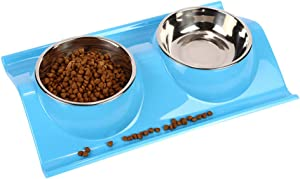 TEESUN Double Dog Bowls Stainless Steel Raised Cat Puppy Food and Water Bowl Dishes for Small Animals Anti-Slip Blue Indoor Home