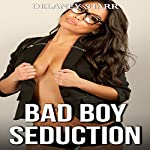 Bad Boy Seduction   Delaney Starr