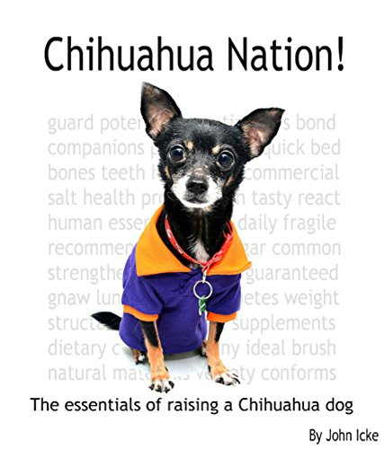 Chihuahua Nation!: The essentials of raising a Chihuahua dog