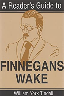 Bilderesultat for Finnegans wake