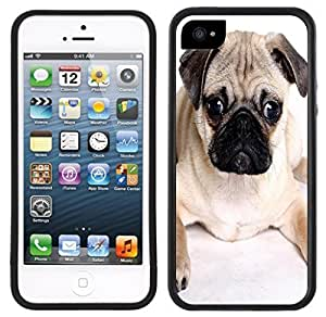 Pug Dog Handmade iPhone 5 5S Black Case