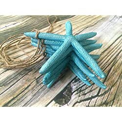 5ft Tropical Blue Starfish Garland