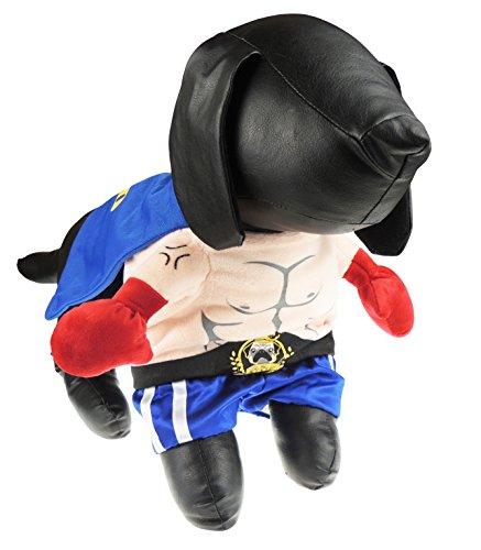 Glamour Girlz Super Nette Hundekatzen kleiden Oben lustigen Kostüm-Muskel-Boxer Halloweens an