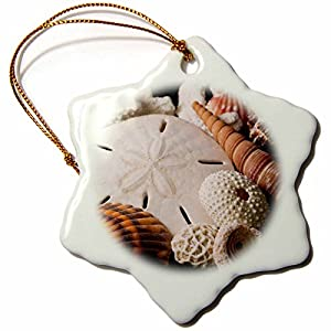 51E7gTSmj4L._SS300_ 100+ Best Seashell Christmas Ornaments