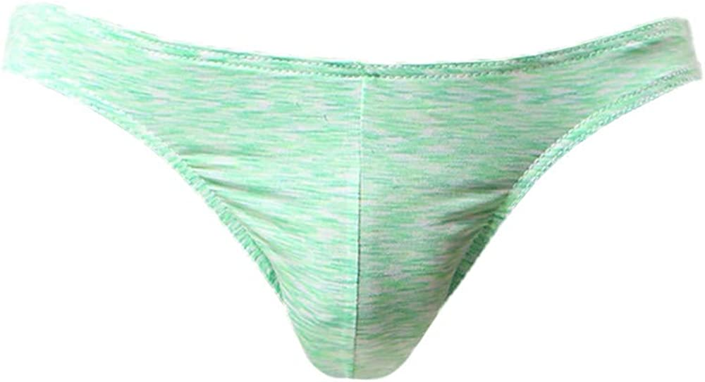 Hunzed Men【Printed Briefs】 Mens Underwear Microfiber Briefs Waistband Silky Touch Underpants Green