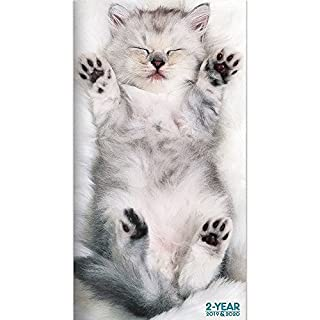 2019 2020 kittens 2 year pocket planner