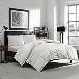 Eddie Bauer Luxury Hypoallergenic 650 Fill Power Lofty Down Comforter - 300 TC Damask Striped Cotton - Medium Warmth (Oversized Queen 90' x 96')