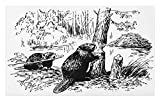 Lunarable Africa Doormat, Eurasian Beaver Furry Aquatic Mammal by The Creek in Forest Hand Drawn Style Image, Decorative Polyester Floor Mat with Non-Skid Backing, 30 W X 18 L inches, Black White
