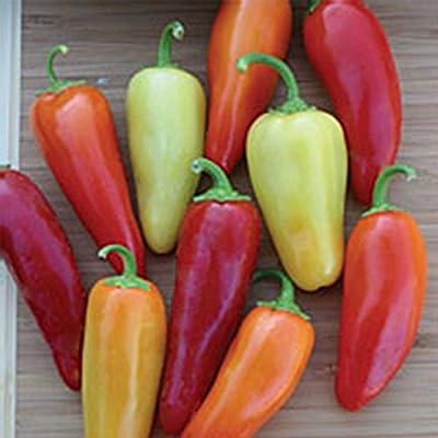 Santa Fe Grande Hot Pepper Garden Seeds - Non-GMO, Heirloom Vegetable Gardening Seed