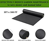 Geotextile Fabric - Weed Barrier - Landscape Fabric - Ground Cover - Weed Control - Garden Fabric - Garden Barrier - Block Fabric - Barrier Fabric - Soil Erosion Landscape Barrier - 3 Ft X 300Ft Black