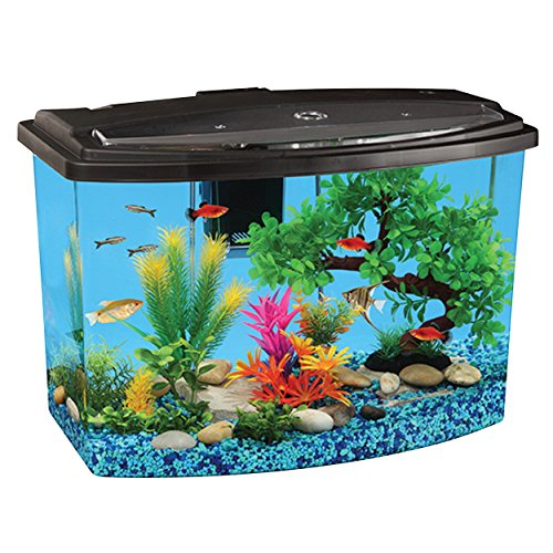 API 5900 Bow View Aquarium Kit, 7 gallon by API