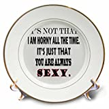 3dRose RinaPiro - Sex Quotes - Its not that I am horny all the time, its just that you always sexy. - 8 inch Porcelain Plate (cp_261472_1)