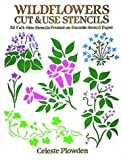 Wildflowers Cut & Use Stencils: 52 Full-Size Stencils Printed on Durable Stencil Paper (Dover Pictorial Archive Series)