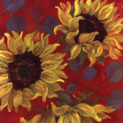 (Sunflower II by Shari White - 24x24 Inches - Art Print Poster )