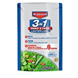 Bayer Advanced 704840B 3-in-1 Weed and Feed for Southern Lawns