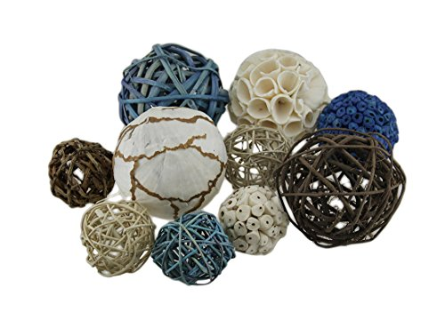Zeckos 18 Pc. Exotic Dried Organic Decorative Spheres