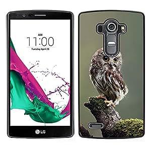 // PHONE CASE GIFT // Duro Estuche protector PC Cáscara Plástico Carcasa Funda Hard Protective Case for LG G4 / owl baby cute feathers blurry nature /