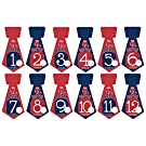Gift Set of 12 Tie Keepsake Photography Monthly Baby Stickers with Boston Red Sox Baseball T102