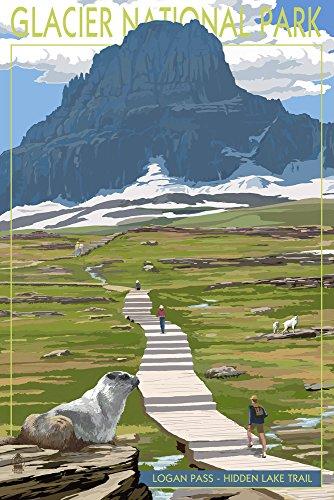 Glacier National Park, Montana - Logan Pass (12x18 Art Print, Wall Decor Travel Poster) ()
