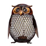 Blingflower Owl Shaped Metal Coin Bank Box Handwork Crafting Arts Animal Ornament Iron Handcrafts