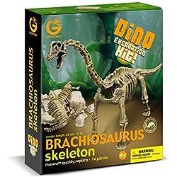 Geoworld Dino Excavation Kit - Brachiosaurus Skeleton by Geoworld