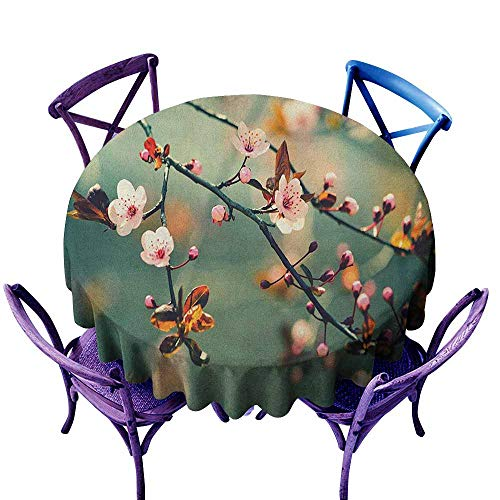 """familytaste Nature,Round Tablecloth D 36"""" Spring Themed Asian Floral Flowering Japanese Cherry Sakura Photo Outdoor Camping Tablecloths"""