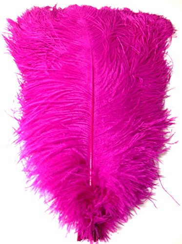 - Ostrich Feathers 18 to 20''. Pack of 6 Feathers (Magenta) Ship From New York