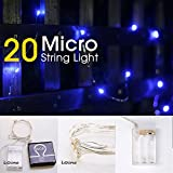 LIDORE Micro LED 20 Super Bright Blue String Lights with timer. Battery Operated on 7.87 Ft Long silver ultra thin copper wire.