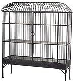 Black Metal 3 Shelf Birdcage Cabinet with 2 Drawers 62''H Display Case