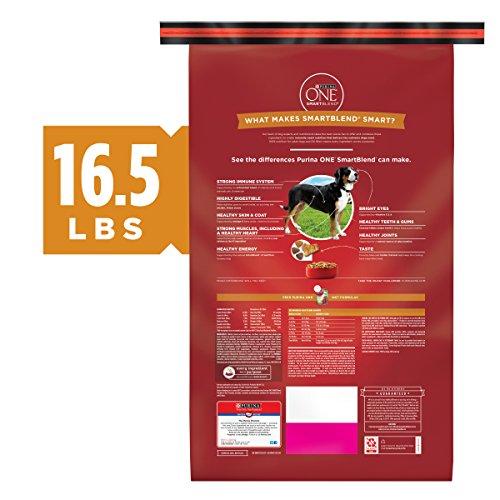 Purina ONE Natural Dry Dog Food, SmartBlend Chicken & Rice Formula - 16.5 lb. Bag