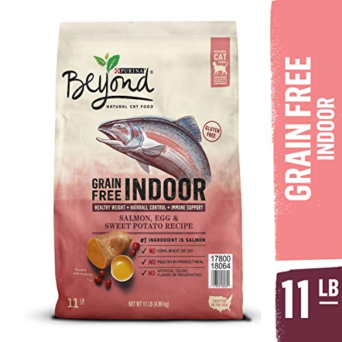Purina Beyond Indoor, Grain Free, Natural Dry Cat Food, Grain Free Salmon, Egg & Sweet Potato Recipe - 11 lb. Bag (Best Natural Cat Food For Indoor Cats)