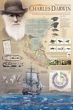 Eurographics Genius of Charles Darwin Poster, Papier, 36 x 24 inch