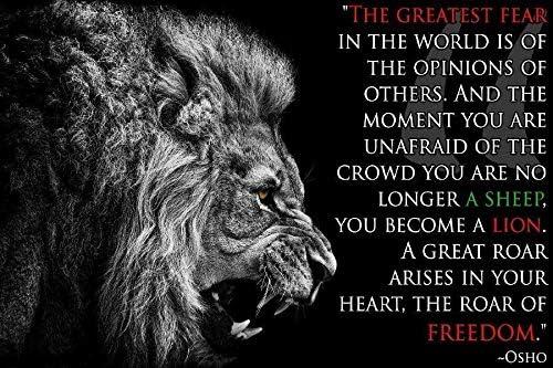 Amazon Com Sava 64433 Osho Quotes Lion Inspirational