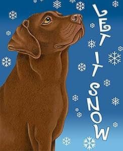 Chocolate Labrador–mejor de raza Let It Snow casa bandera