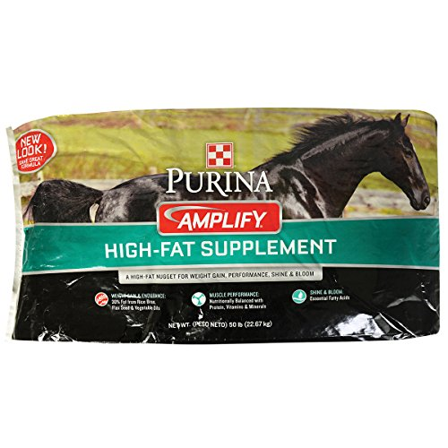 Fat Supplement - Purina Animal Nutrition Amplify Equine Supplement