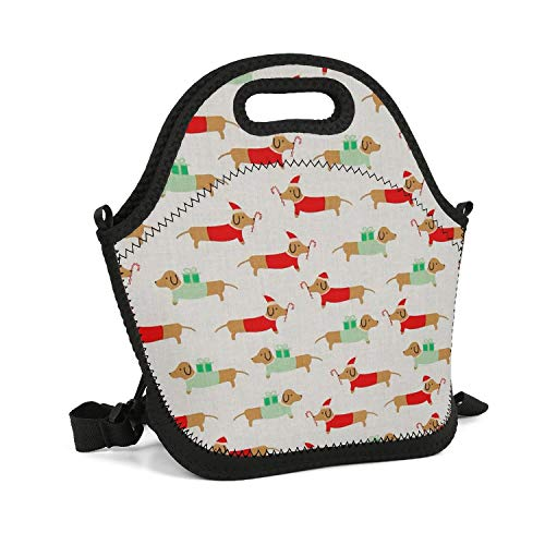 Vgfyujhg Christmas Darlings Dachshunds Lunch Bag Colorful Fun for Beach Tote Insulated Lunch Bag