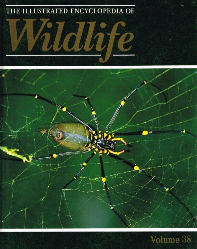 the-illustrated-encyclopedia-of-wildlife-volume-38-feeding-fangs-spiders-ticks-and-mites-