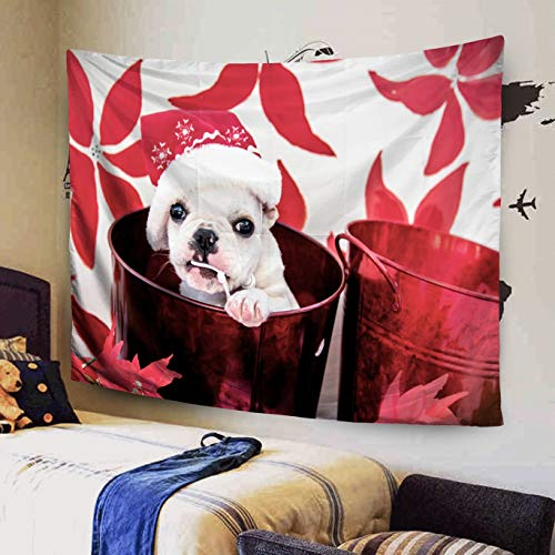 KIOAO 60x50 Inches White French Bulldog Puppy Wearing Chewing Santa Hat in Red Christmas Bucket Poinsettia Flowers Tapestry for Dorm Wall Hanging and Home Bedroom Living Room Art