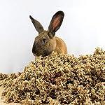 Small-Pet-Select-Jumbo-Natural-Paper-Bedding-178-L